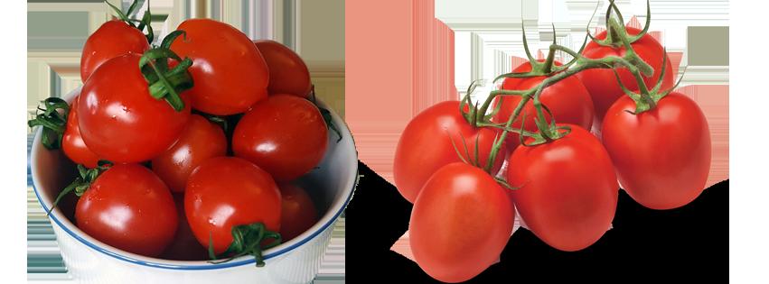 Tomaat als basis voor sauzen